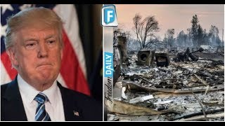 TRUMP WAS RIGHT! LOOK WHO WAS JUST BUSTED FOR STARTING DEADLY CALI FIRE THAT KILLED 41 SO FAR HERE'S