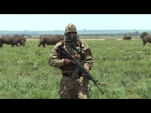 Military veterans drafted into S.Africa poaching war