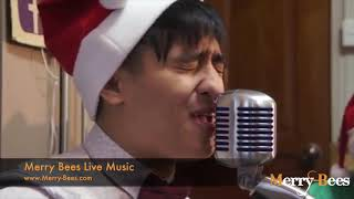 Merry Bees Live Music - The Lost Box singing All I Want For Christmas by Mariah Carey