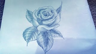 How to Draw A Rose  | Realistic | Easy | Live with pencil
