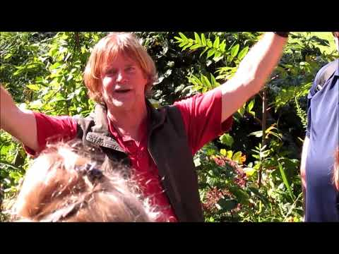 Wild Edibles and Medicinal Plants with Richard Cleveland