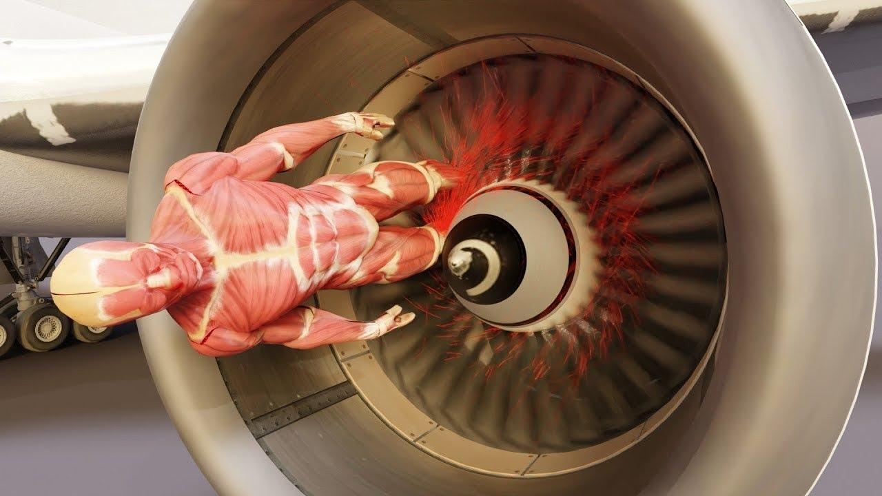 कभी मत जाना PLANE के ENGINE के पास वरना होगा कुछ ऐसा कि डर जाओगे! CRAZIEST EXPERIMENTS PT 13