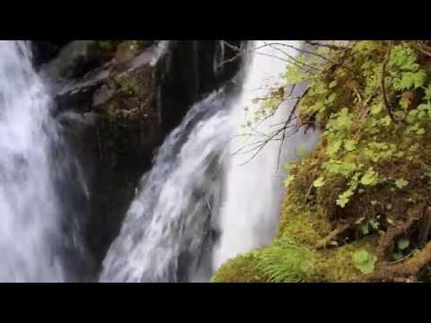 Sol Duc Falls - a popular temperate rain forest waterfall