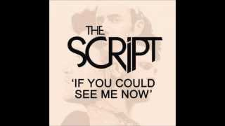 Repeat youtube video If You Could See Me Now - The Script