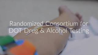 Rosquist Dot Drug and Alcohol Testing Clinic