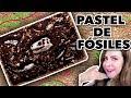 FÓSILES. Procesos de Fosilización - YouTube
