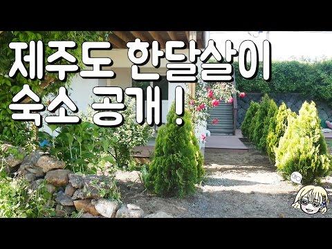 [ JEJU ] 제주 한달살이 숙소 공개~* : 초의 해시