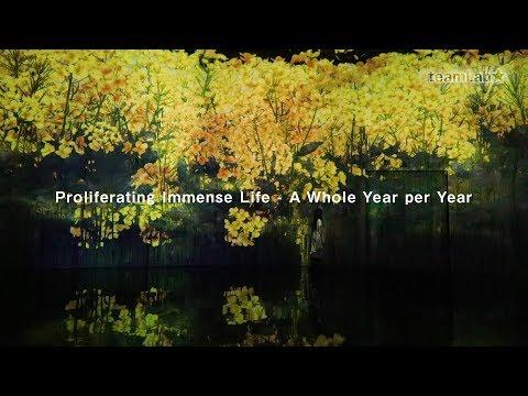 Proliferating Immense Life - A Whole Year per Year