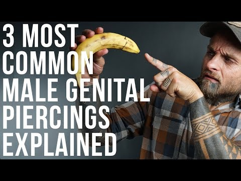 3 Most Common Male Genital Piercings Explained | UrbanBodyJewelry.com