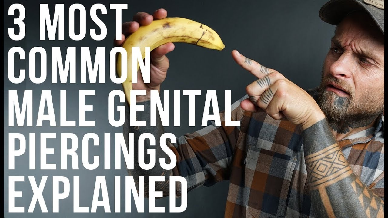 most common male genital piercings explained