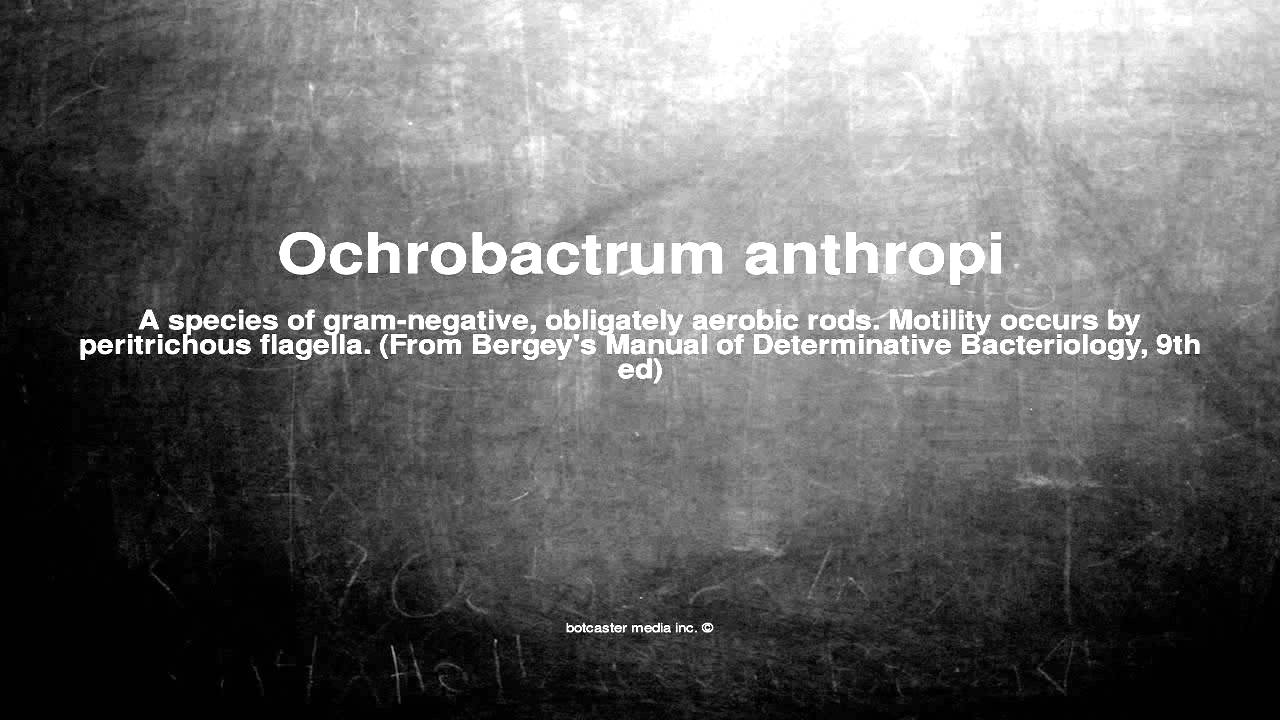 OCHROBACTRUM ANTHROPI EPUB DOWNLOAD