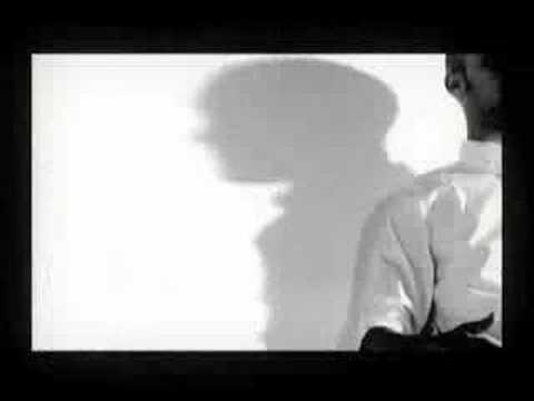 THE JAI ALAI SAVANT - WHITE ON WHITE CRIME