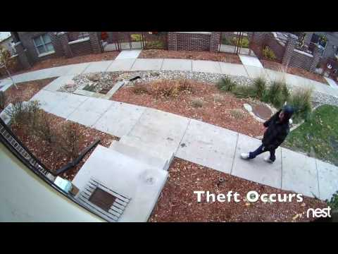 Package Thief In Des Moines, Iowa