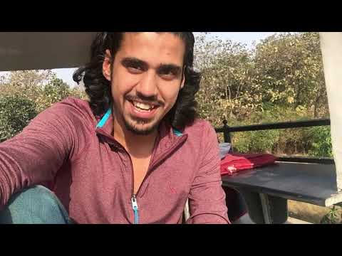 Into THE GIR NATIONAL PARK | Gujarat Vlog1 | Wildly Indian