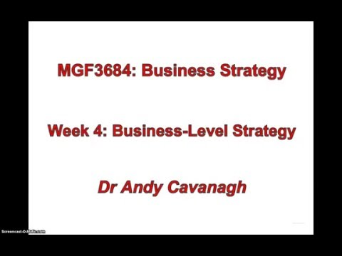 Business-level Strategy- Introduction