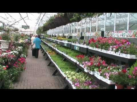 Garden Centre.wmv