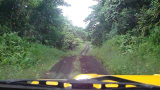 roads of Taveuni Island, Fiji-dirt road ramble2-through the jungle