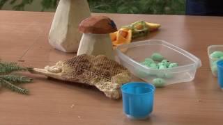 III. Piknik Przyrodniczy w STO