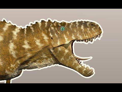 TYRANNOSAURUS REX NEW ROAR: Beasts Of Bermuda