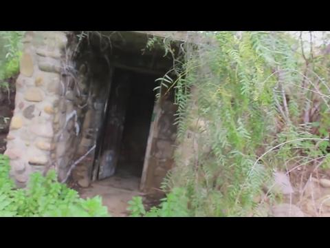 Hidden san diego :  Beelers hobbit home