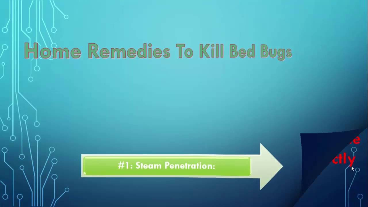 9 effective home remedies to kill bed bugs overnight [[**tested