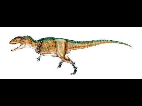 Carchadontosaurus | Enciclopedia sobre Dinosaurios