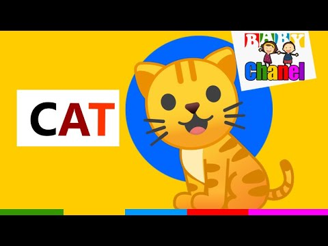 Learn To Read And Spell with 3 Letter Sight Words | ABC Letter Word Phonics