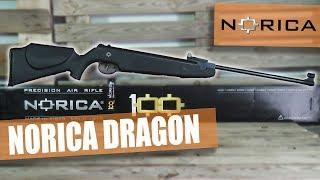 NORICA DRAGON