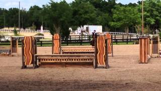 FREE LEASE: Stop The Music, RMI Ocala Horse Show. Available for FREE BROODMARE LEASE
