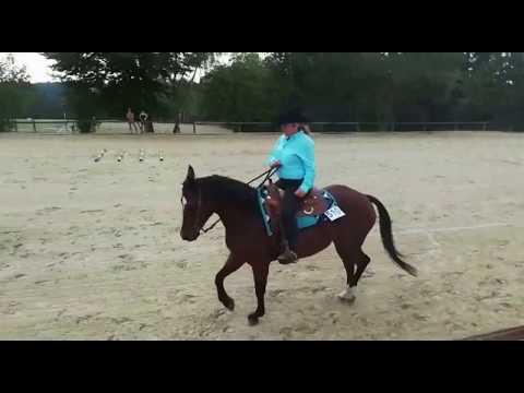 Nicola & Fancy Ranchriding | Westernreiten | EWU Turnier Wermelskirchen Pferd Reiten
