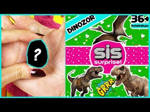 Sis Surprise Oyuncak Hazine Ne Çıktı Sis Dinozor 6 Dila Kent