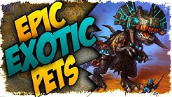 TOP 5 EPIC EXOTIC HUNTER PETS IN BFA!