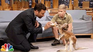 Robert Irwin and Jimmy Feed a Baby Kangaroo thumbnail