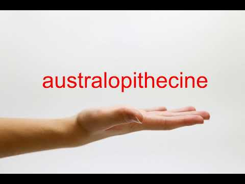 How to Pronounce australopithecine - American English