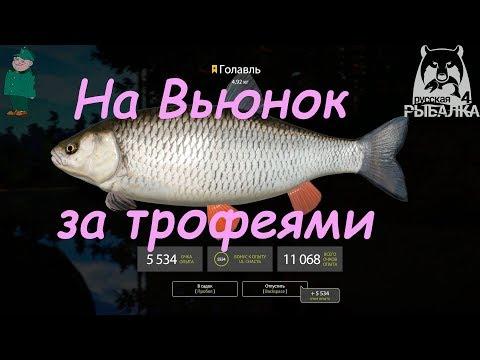 Русская рыбалка 4. Спиннинг на Вьюнке. Воблеры и ультралайт