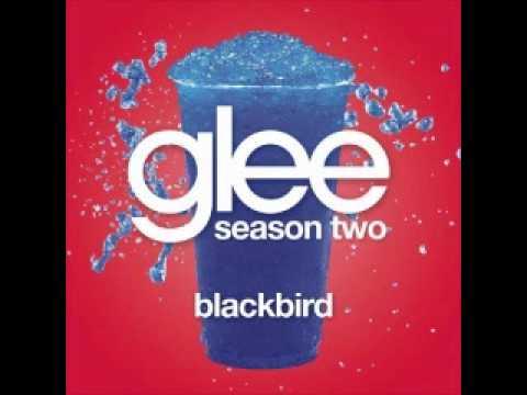 Glee Cast - Blackbird (w/ lyrics)