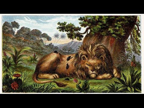 kingdrop 2017   Prester John #26   An Entire Nation Once Called Mosoch   Theodorus Aimeri-Khan