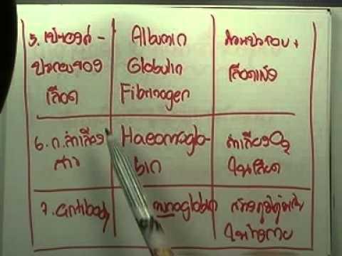 วิทย์O-NET ม.ปลาย ; เคมี : สารชีวโมเลกุล (แบบฝึก),ตอน08