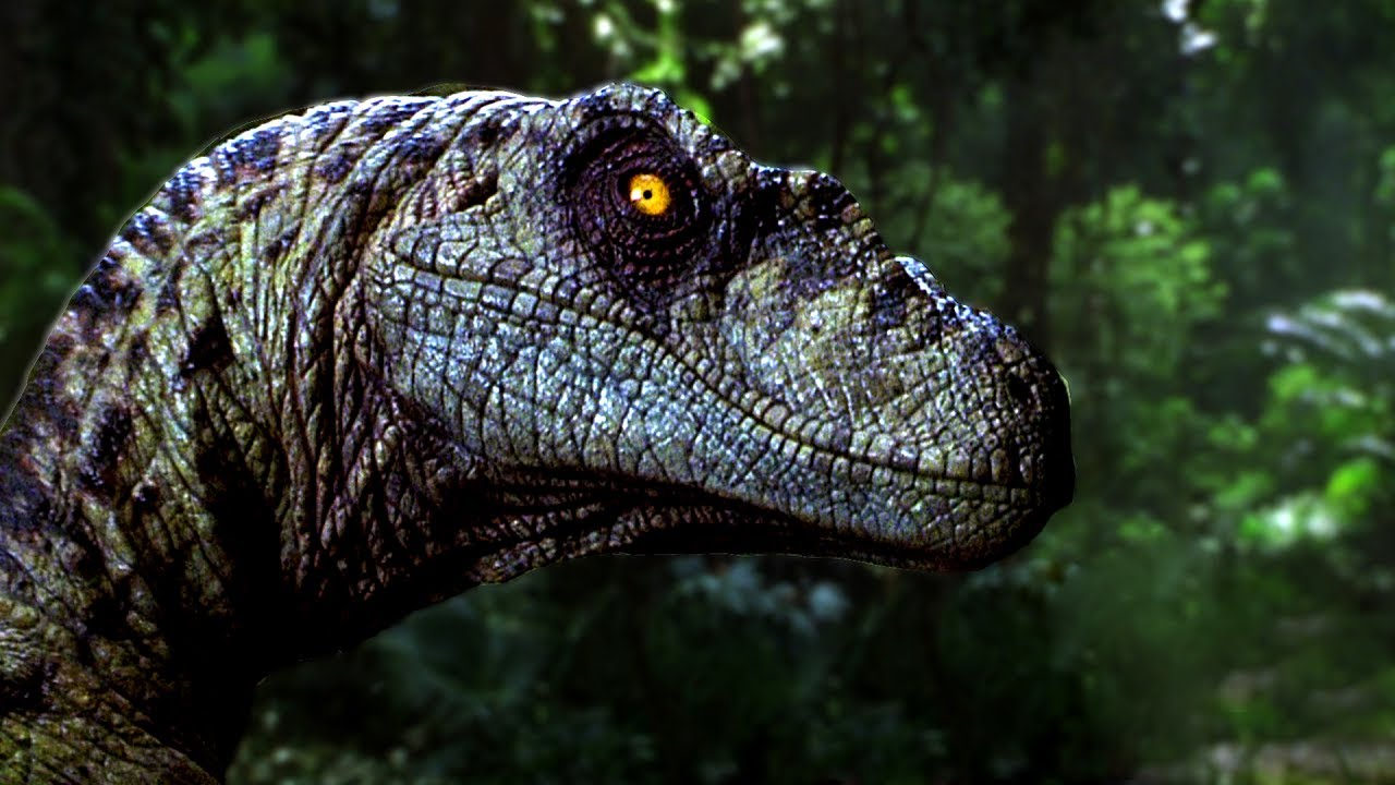 top 10 facts about velociraptors you didn t know youtube