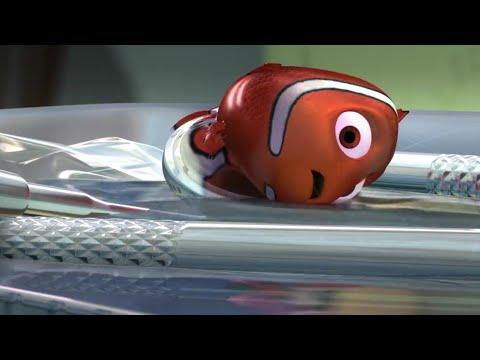 Download Nemo's escape scene - Finding Nemo (2003) | Hindi
