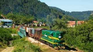 EMD G16 in action on Serbian freight trains