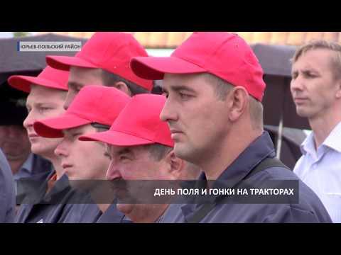 День поля в Юрьев-Польском (2019 06 17)