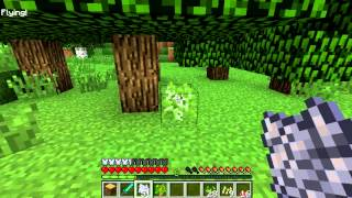 Minecraft Blocks & Items: Bonemeal