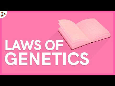 Laws Of Genetics - Lesson 5
