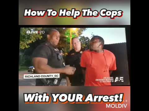 Pot Brothers at Law TIP of the day HOW TO HELP GET YOURSELF ARRESTED