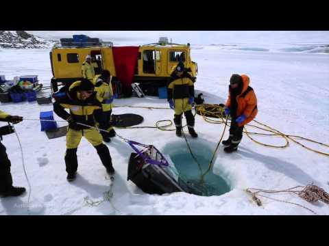 Building a future ocean in Antarctica