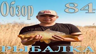 Рыбалка Майский обзор 84 Охота на Карповых 2019 рыбалка в Казахстане