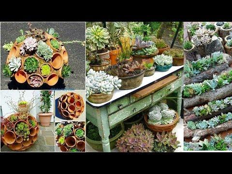 Indoor Succulent Garden Ideas | Antique Dough Bowl Turned Succulent Planter | Mini Gardening Im Topf
