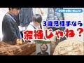 【検証】3歳児が相手だったらイロモネア余裕で100万円獲得できる説