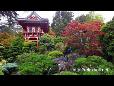 Amazing Erhu Music | Traditional Chinese Music | Meditation For Calming & Relaxation.